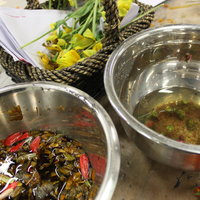 Penny Walsh natural dyeing using common plants
