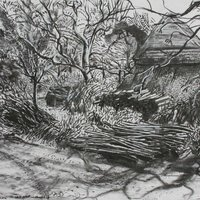 Rosie MacCurrach drawing in the landscape - pattern and light