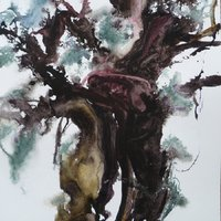 Christine Forbes Trees and woodland three approaches – watercolour