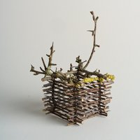 Jane Bevan Sculptural art from natural materials