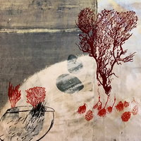 Dawn Dupree Organic expressions in textile print