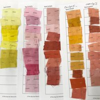 Isabella Whitworth A first dip into natural dyes