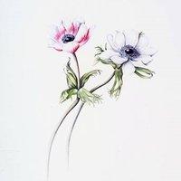 Mariella Baldwin Botanical painting – anemones