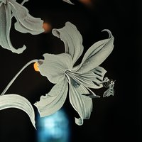 Tracey Sheppard Glass engraving for all