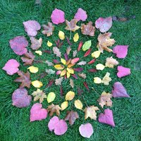 Leaf Mandala 8, by Dan Lobb