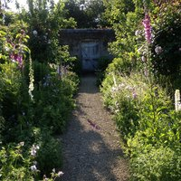 Benjamin Pope Managing and maintaining a mixed herbaceous border