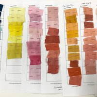 Isabella Whitworth An introduction to using natural dyes