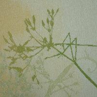 Philip Sanderson Tapestry weaving - the basics