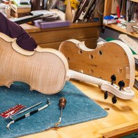 Musical instrument making – violins, violas and cellos