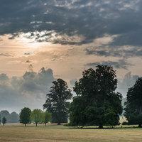 Roy Matthews Digital photography - the essentials