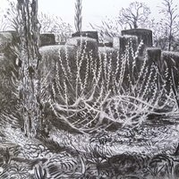 Rosie MacCurrach Drawing in the landscape - pattern and place