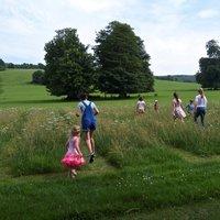 Caroline Wendling One line, one walk, three days – a drawing course