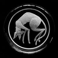 Nancy Sutcliffe Glass engraving – small treasures