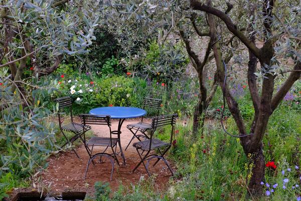 James Basson RHS garden