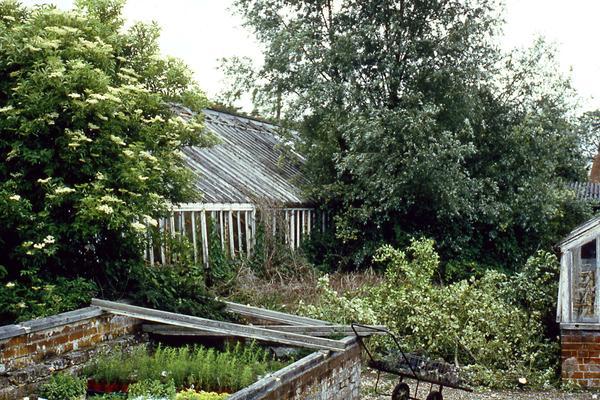 West Dean Victorian glasshouses circa 1991
