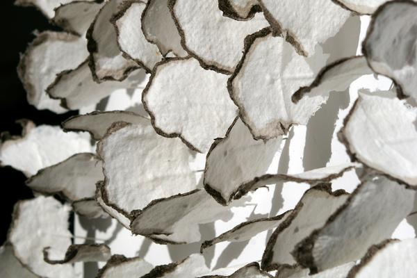 Jane Ponsford: accumulation