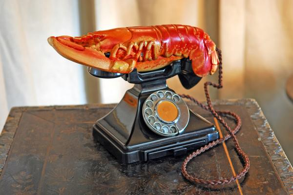 The Lobster Telephone by Salvador Dali, part of the Edward James Collection