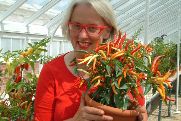 Gardens Supervisor Sarah Wain with Pencil Cayenne Chillies