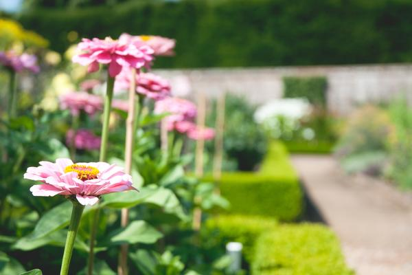 Garden Styles at West Dean Gardens