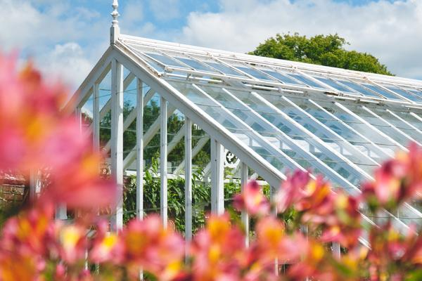 Glasshouse at West Dean Gardens