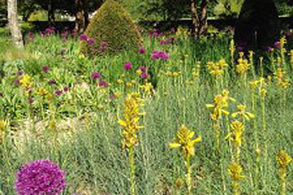 Spring Gardens at West Dean West Sussex
