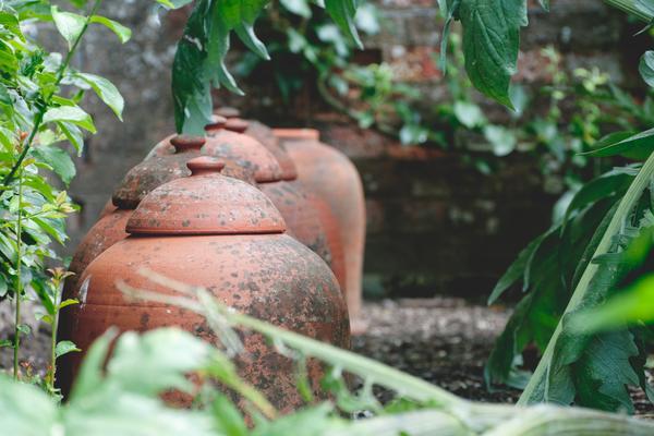 Pots in the Walled Kitchen Garden at West Dean Gardens