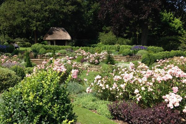 The Sunken Garden at West Dean in July