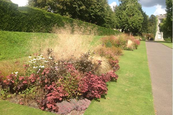 Autumn grasses at West Dean Gardens