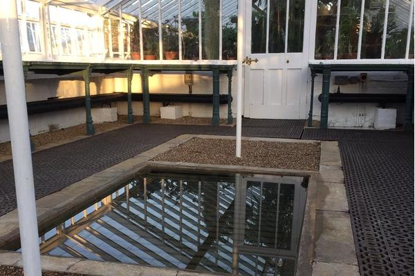 Cleaned glasshouse at West Dean Gardens