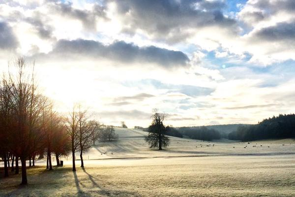 A frosty view of the arboretum at West Dean Gardens