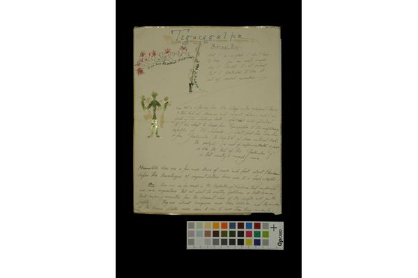 https://www.westdean.org.uk/study/blog/collections-library-and-archive/cataloguing-the-edward-james-archive