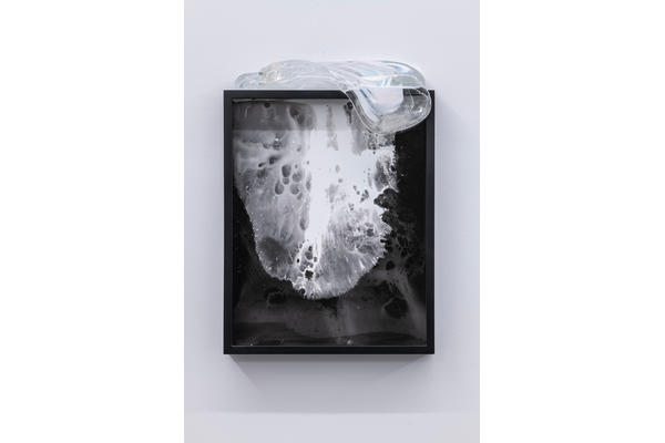 Gabriele Beveridge 'Cosmetic Universals Choke I' Seventeen Gallery 2018. Beveridge made the photograms for her solo exhibition 'Live Dead World' during her residency in 2017.