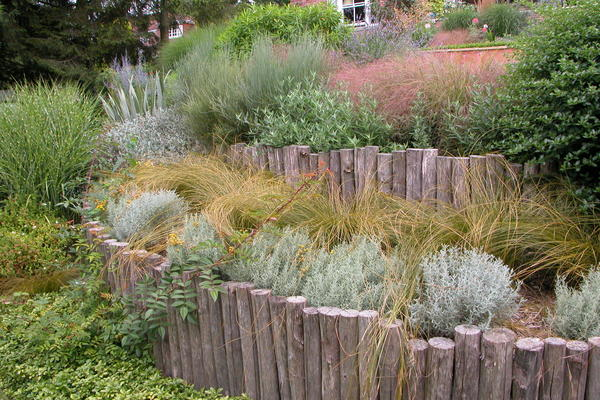 Designing gardens for Climate Adaption