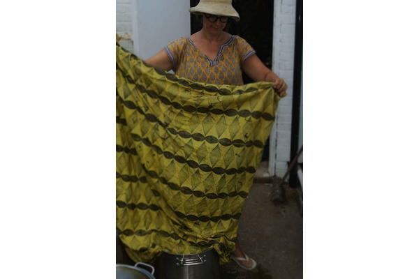 Dyeing with Weld - Sarah Burns