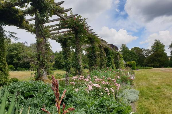 Flowers are beginning to bloom along the Edwardian Pergola