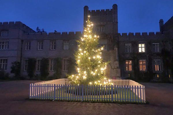 Christmas tree at West Dean College of Arts and Conservation
