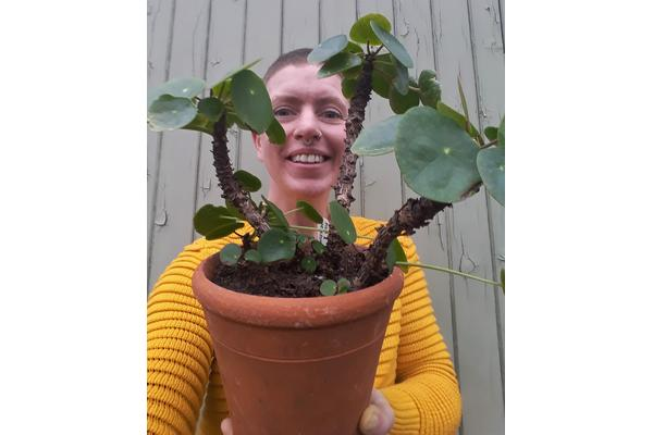 Kelly Dyer, Glasshouse Gardener. Pictured holding a 'Pilea peperomioides'.