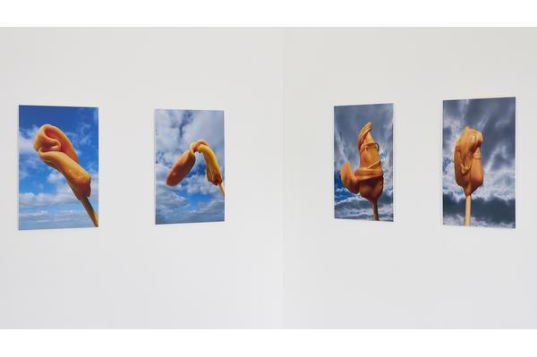 Anja Beckert. Installation view, 2021. Image © Barney Hindle Photography