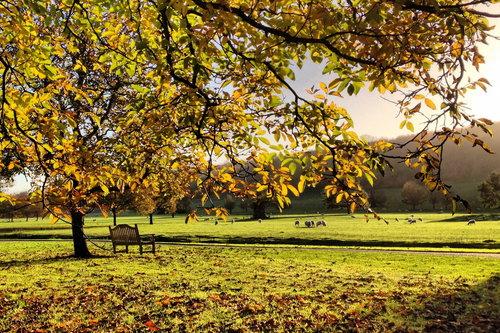 West Dean Gardens in Autumn