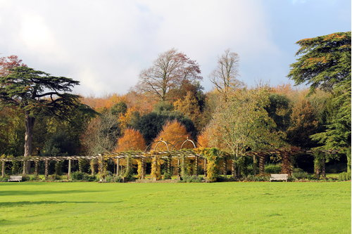 Autumn view of the pergola at West Dean Gardens