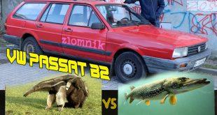 Złomnik: VW Passat B2 MRÓWKOJAD KONTRA SZCZUPAK  – [Video]