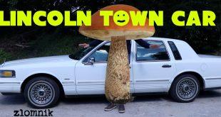 Złomnik: Lincoln Town Car – The American Mushroom  – [Video]