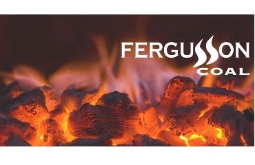 Ferguson & Co logo
