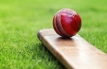 Stenhousemuir Cricket Club logo