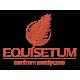 Centrum Medyczne Equisetum